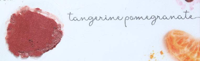 Luk Beautifood Lip Nourish Swatches - Tangerine Pomegranate, Mandarin Spice, Vanilla Chocolate and Chai Shimmer. Gone Swatching xo